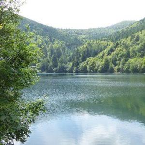 Camping Clos De La Chaume : Lac Du Grand Ballon Lac Des Vosges