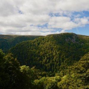 Camping Clos De La Chaume : Panorama Des Vosges