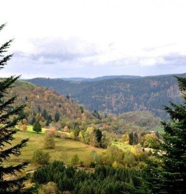 Camping Clos De La Chaume : Visiter Les Vosges Corcieux