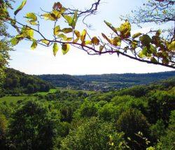 Camping Clos De La Chaume : Vue De Montenach