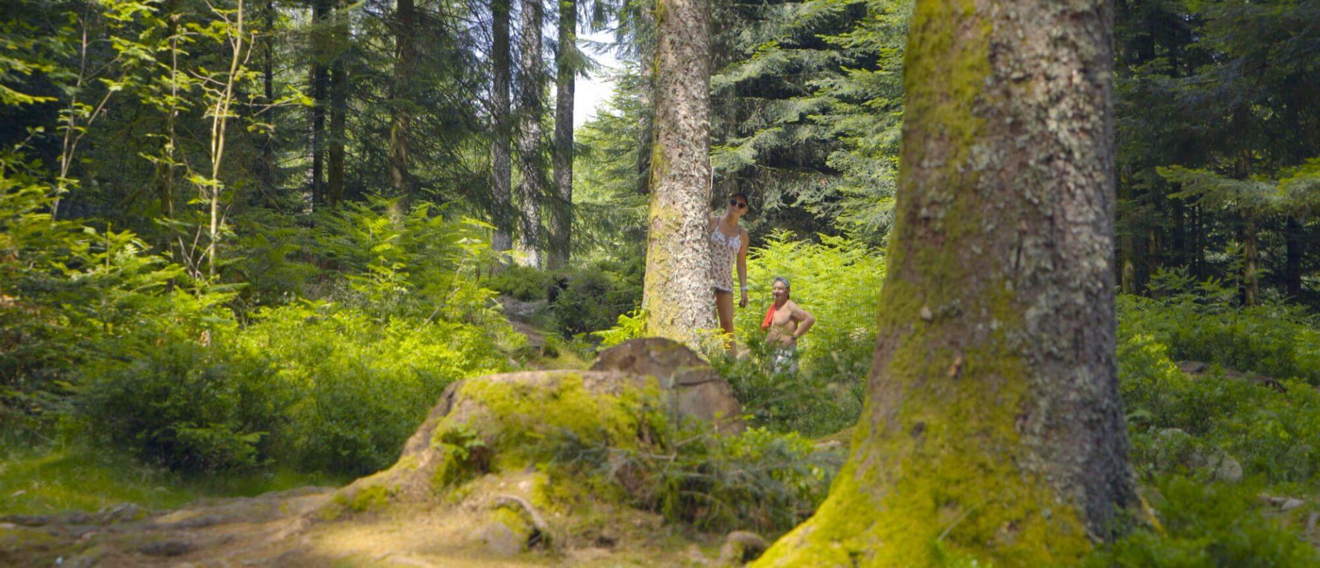 Camping Clos De La Chaume : Petit Bois Au Camping Au Clos De La Chaume Camping Sites Et Paysages Vosges Alsace Lorraine
